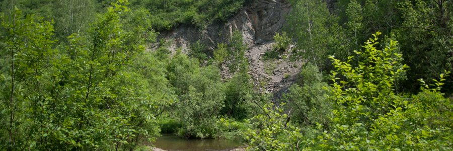Скала на реке Издревая